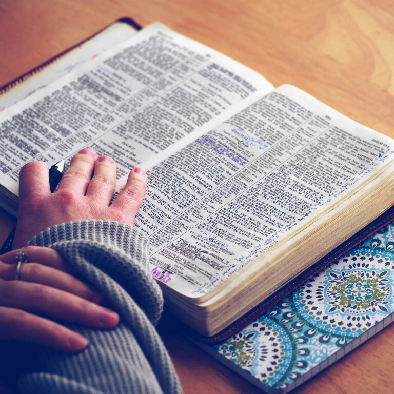 New Bible Study for Women