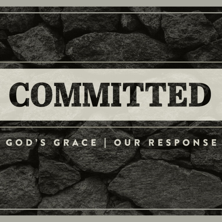 """Our """"Committed"""" Series"""